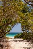 Strand von Anse Trabaud, Martinique Lizenzfreies Stockfoto