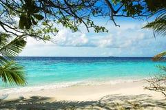 Strand von maledivischer Insel Stockfotografie