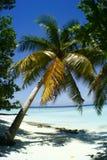 Strand von Rannalhi Lizenzfreie Stockfotografie