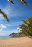 Strand von San Andres Stockbilder