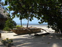 strand zanzibar Royaltyfria Foton
