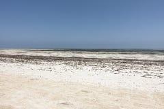 Strand in Zanzibar Royalty-vrije Stock Afbeelding