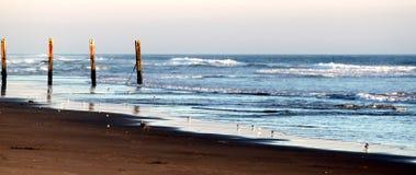 Strand-Zaun Stockfoto