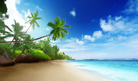 Strand in zonsondergangtijd op Mahe-eiland Royalty-vrije Stock Foto
