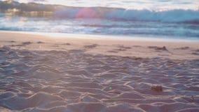 Strand in Zuid-Carolina Amerika stock videobeelden