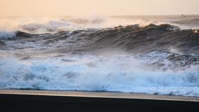 Strand zwart oceaanijsland stock video