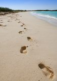 Strandabdrücke Stockfotos