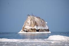 Strandade ship's bugar ovanför vattenlinjen och fryst i iskustlinje i förgrund fotografering för bildbyråer