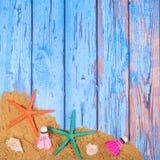 Strandaffisch med sjöstjärnor Royaltyfria Foton