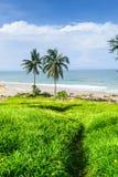 Strandansicht über Garten stockfotos