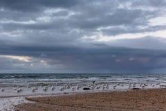 Strandansicht eines tasmanischen Strandes Lizenzfreie Stockfotos