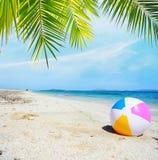 Strandbal onder een palm royalty-vrije stock foto