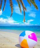 Strandbal onder een palmtak stock foto