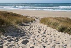 strandbana som är sandig till royaltyfri foto