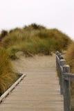 strandbana till Royaltyfria Bilder