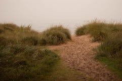 Strandbana till och med gräs Royaltyfria Foton