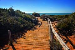 strandbana till trä Royaltyfria Foton