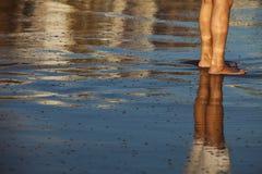 strandben Royaltyfria Bilder