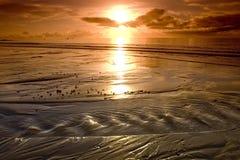 strandbeskickning Royaltyfri Bild