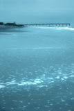 strandblue Arkivbild