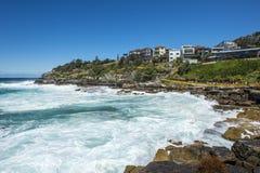 strandbondi sydney Royaltyfria Foton