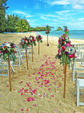 Strandbröllop i Hawaii Arkivfoto