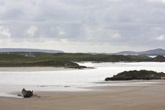 strandbunbeg Fotografering för Bildbyråer