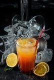 strandcoctailen k?nsbest?mmer Orange fruktsaft, vodka, granatäppelsaft royaltyfri foto