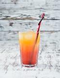 strandcoctailen k?nsbest?mmer Orange fruktsaft, vodka, granatäppelsaft royaltyfria bilder