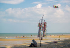 Stranddrake Arkivfoto