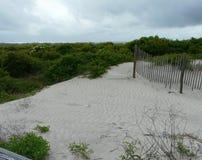Stranddyn och staket Arkivfoto