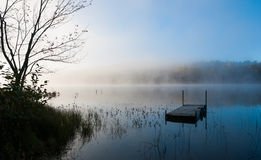 Stranded dock at cottage lakeside Royalty Free Stock Images