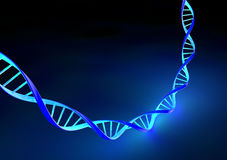 Stranded DNA molecules Stock Images