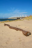 Stranded goods. Wooden root stranded at beach on neeltje jans Royalty Free Stock Photos