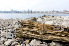 Strandegenskap Arkivfoto