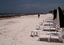 Stranden av Tulum, Mexico Arkivbilder