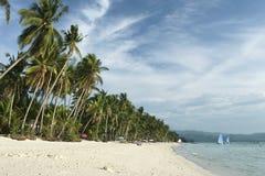 stranden boracay gömma i handflatan philippines tress Arkivfoto