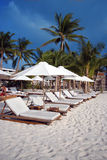 stranden chairs white Arkivfoton