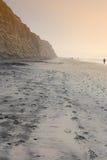 stranden diego sörjer den san torreyen Arkivfoto