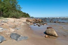 Stranden för det baltiska havet med vaggar och gammalt trä royaltyfri bild