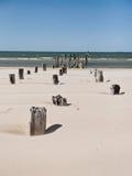 Stranden för det baltiska havet med vaggar och gammalt trä arkivbild