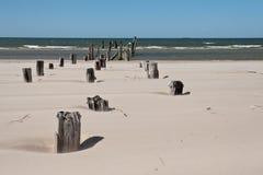 Stranden för det baltiska havet med vaggar och gammalt trä royaltyfri fotografi