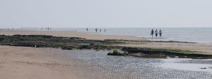 Stranden går Arkivfoton