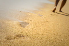 stranden går Royaltyfri Foto
