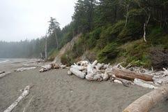 Stranden går på Puget Sound Arkivfoto