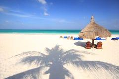 stranden gömma i handflatan den tropiska skuggatreen royaltyfria bilder