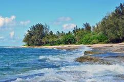 Stranden gömma i handflatan och havet Royaltyfria Foton