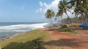 stranden gömma i handflatan sommartreessemestrar Royaltyfri Bild