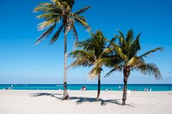 stranden g?mma i handflatan royaltyfri foto