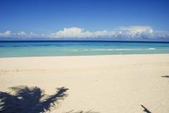 Stranden havet, gömma i handflatan skugga, sommar, skönhet, Paradise royaltyfria bilder